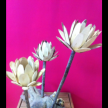 Medium 4-flower driftwood Centerpiece
