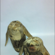 NEW Driftwood Penguin 18cm . NEW