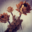 Small 3-flower driftwood Centerpiece